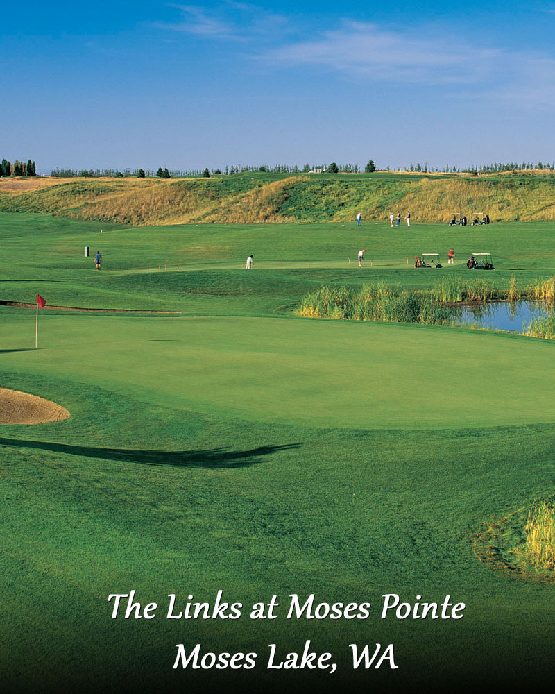 The Links at Moses Pointe